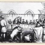 Les procès faits aux animaux