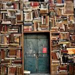 Le Tsundoku et autres manies des livres