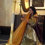 Une harpe, des harpes.