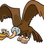 Pourquoi le vautour n'est jamais malade ?